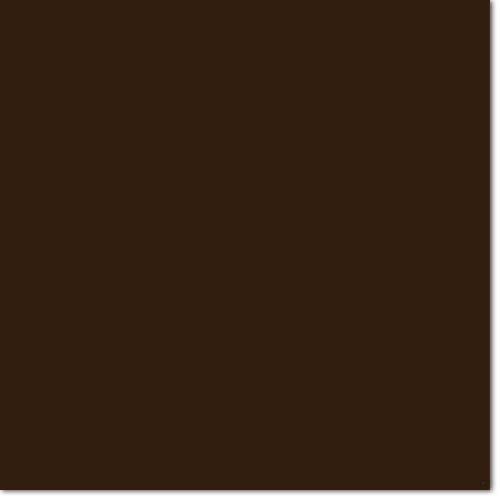 Chocolate Microblading Eyebrow Pigment