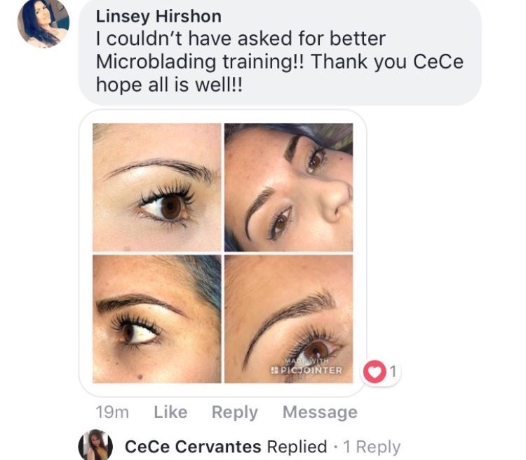 Microblading Eyebrow 3 Day Class Holiday Special 15 Off Forever